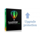 CorelDRAW GS Upgrade Protection Program Renewal Mac (12 мес)