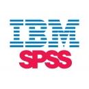 IBM SPSS Statistics (1 мес)