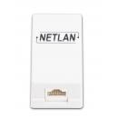 NETLAN EC-UWO-1-UD2-WT-10 Настенная розетка (10 шт)