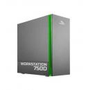 Forsite 800D Графическая станция FWS800DH19