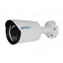 Si-Cam SC-DSW301F IR (12 mm) IP-камера