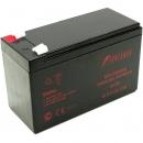 Powerman CA1272/UPS Аккумуляторная батарея
